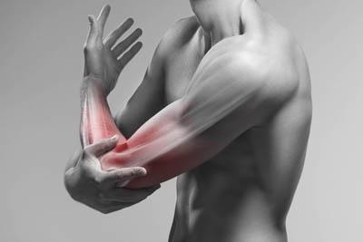 Ellbogen mit Ober- und Unterarmmuskeln