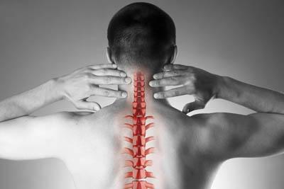 Wirbelsäule mit Fokus auf den Halswirbeln